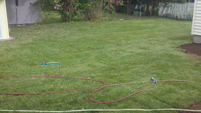 Lawn-Sod-035-after.jpg