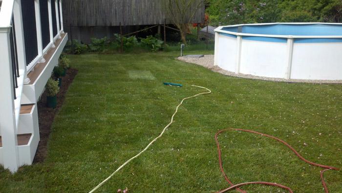 Lawn-Sod-055-after.jpg